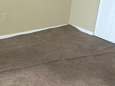 Carpet Dyeing and Repair Services in Denver
