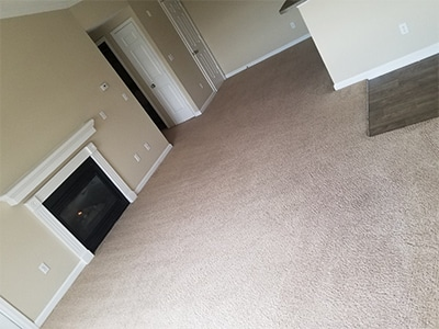 Commercial and Multi-Family Carpet Cleaning in Denver