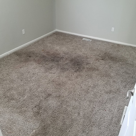 Home Impression Carpet Cleaning And Repair